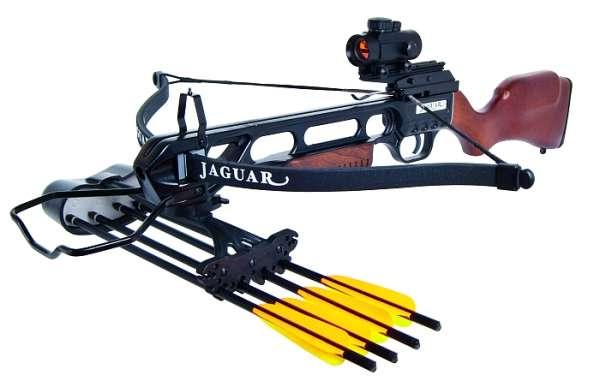 Recurve Armbrust Jaguar Holz 175lbs