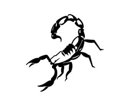 Scorpion Security
