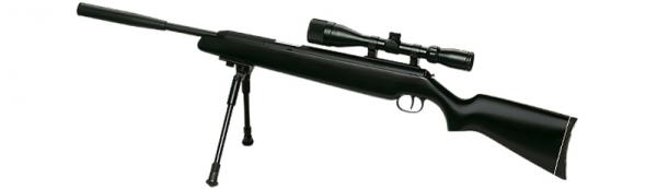 Luftgewehr Diana Modell 48 Black Professional